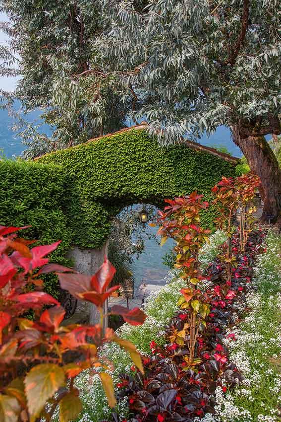 Isola Madre Giardini