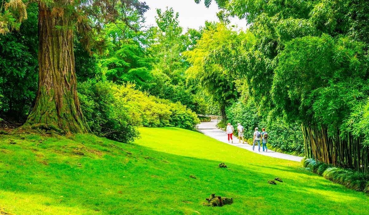 Isola Madre  + Parco Pallavicino