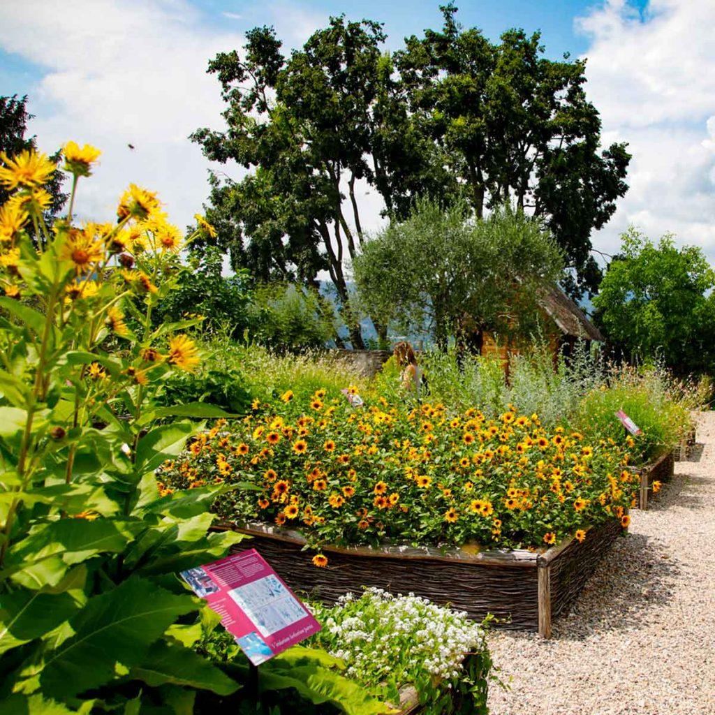 giardino erbe piccole rocca di angera