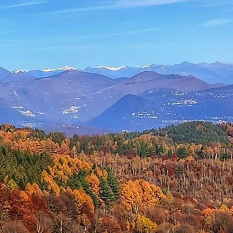 Mottarone, the colours of autumn foliage